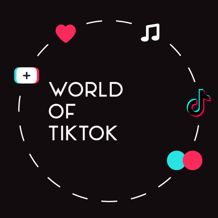 world of tiktok